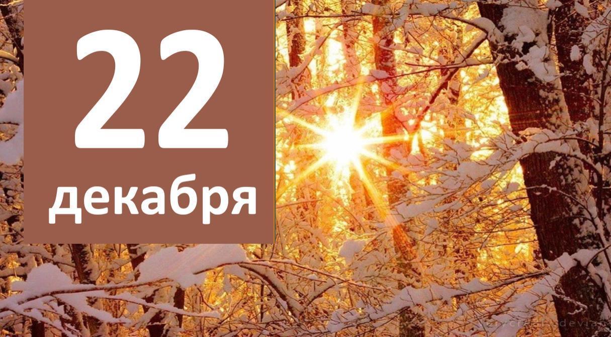 Из первых рук: итоги 22 декабря 2020 года