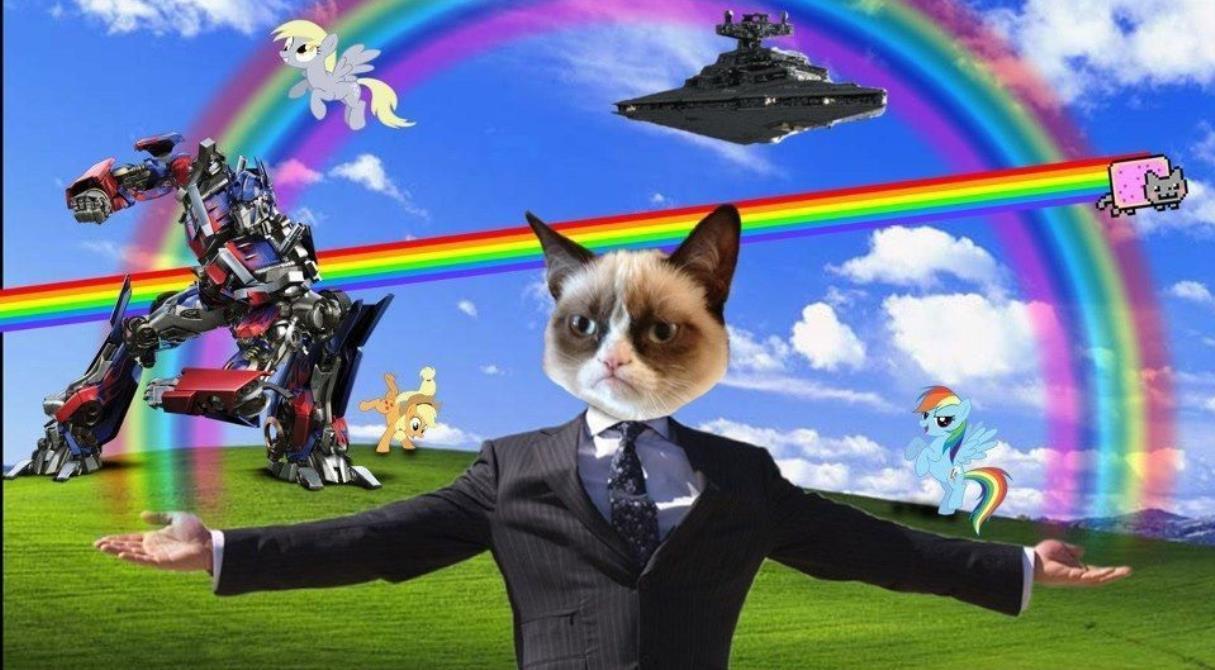 Добро пожаловать в интернет, котятки. Как вернуть деньги за «бесплатную» услугу?